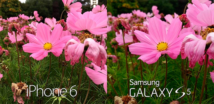 Cámara iPhone 6 vs Samsung Galaxy S5