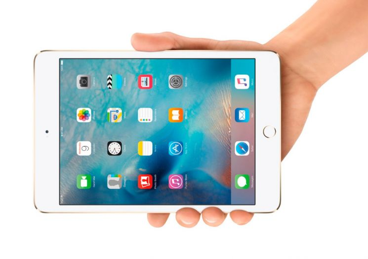 Pantalla del iPad Mini 4